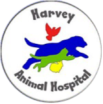Harvey Animal Hospital - Animal Hospital, Veterinary Hospital in Grosse pointe/Detroit/St. Clair shores